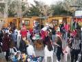 Συμμετοχή στο Χριστουγεννιάτικο χωριό του Δήμου Πρέβεζας